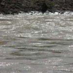夏の川に打ち上げられた水死体